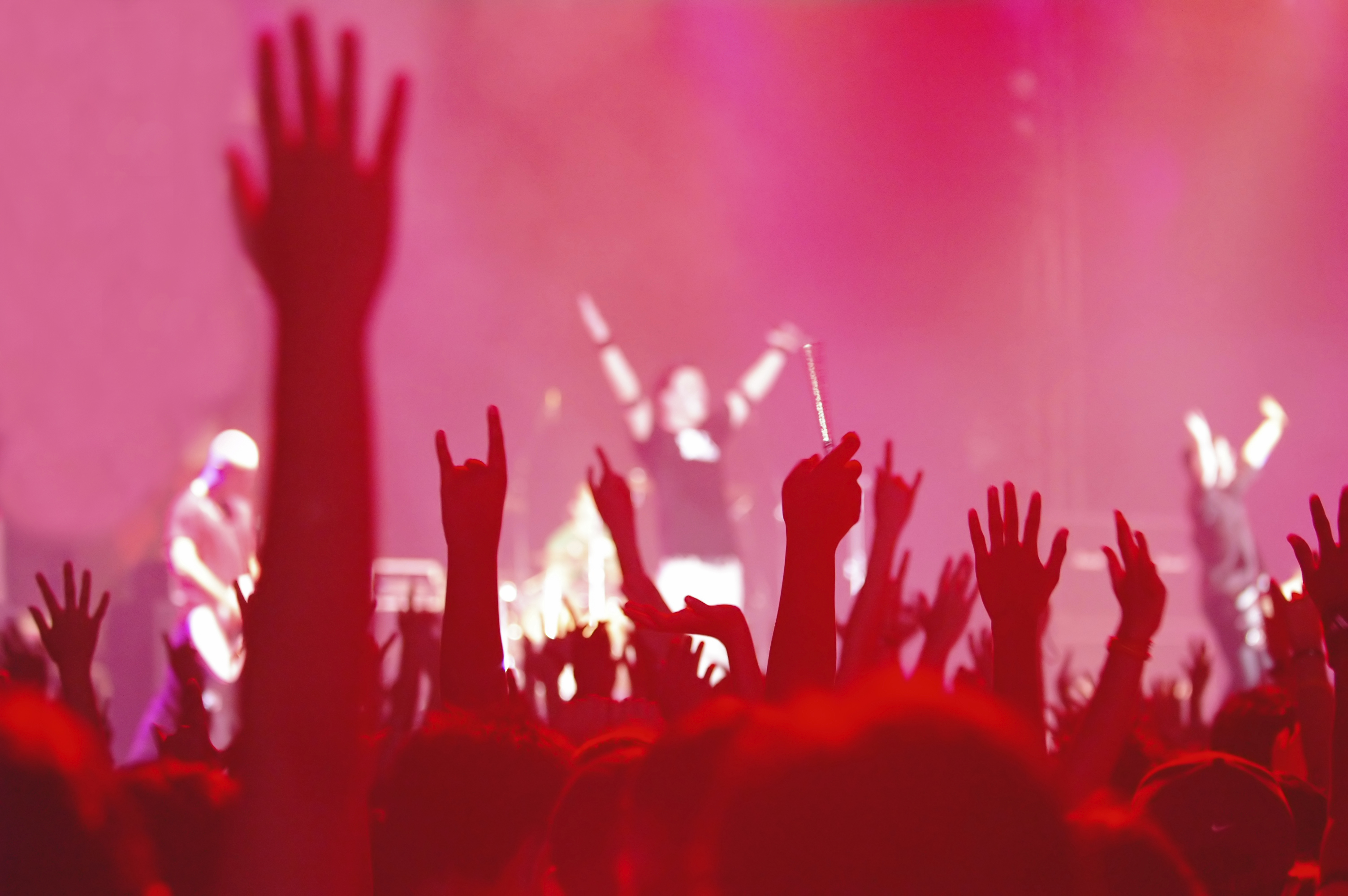 "Does Your Organization Have ""Solid Performers"" or Rock Stars?"