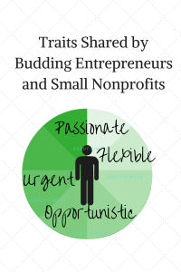 Budding Entrepreneurs and Small Nonprofits