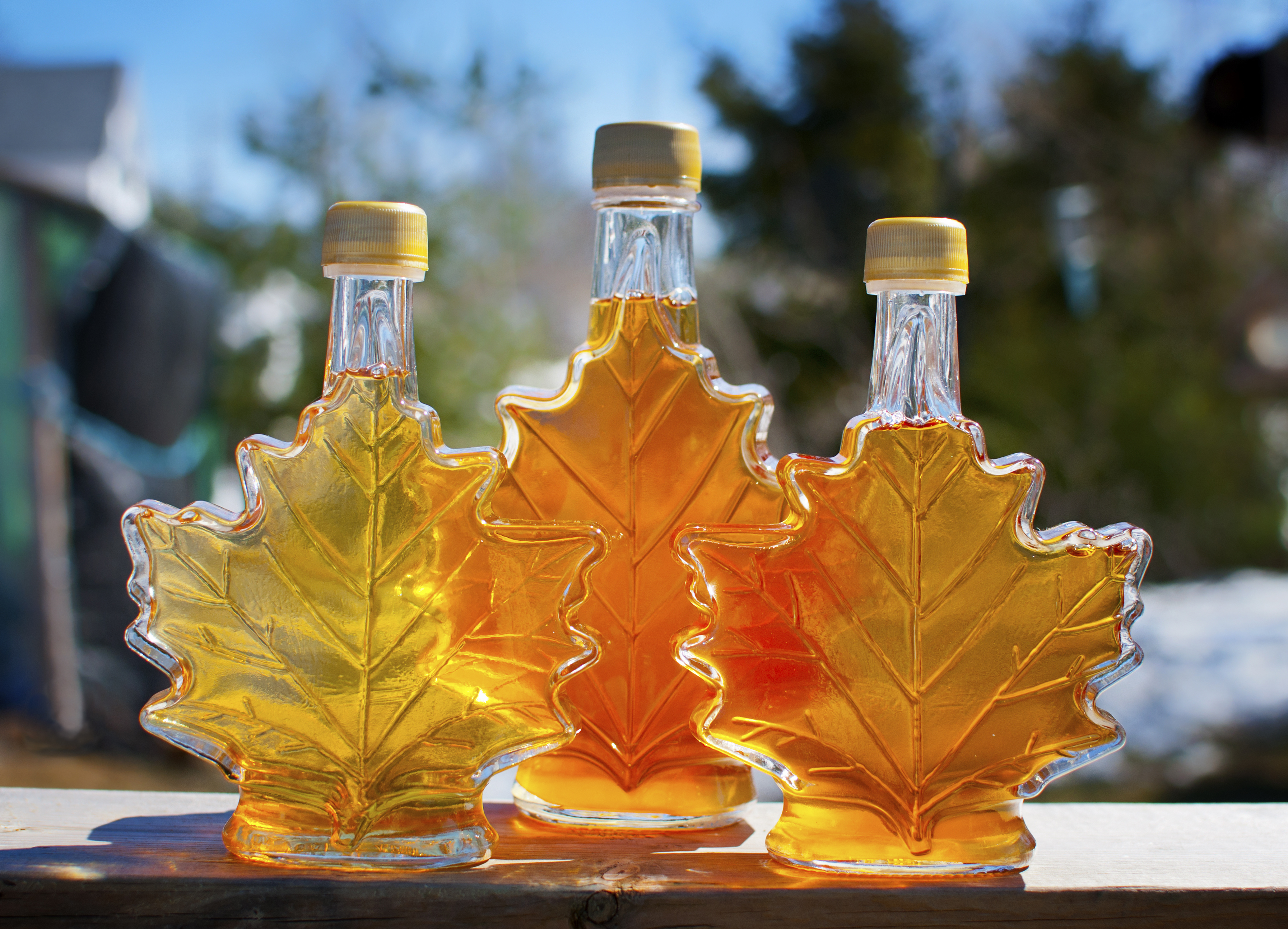 Corporate Giving: What's Next? Lessons from the Maple Syrup Mafia
