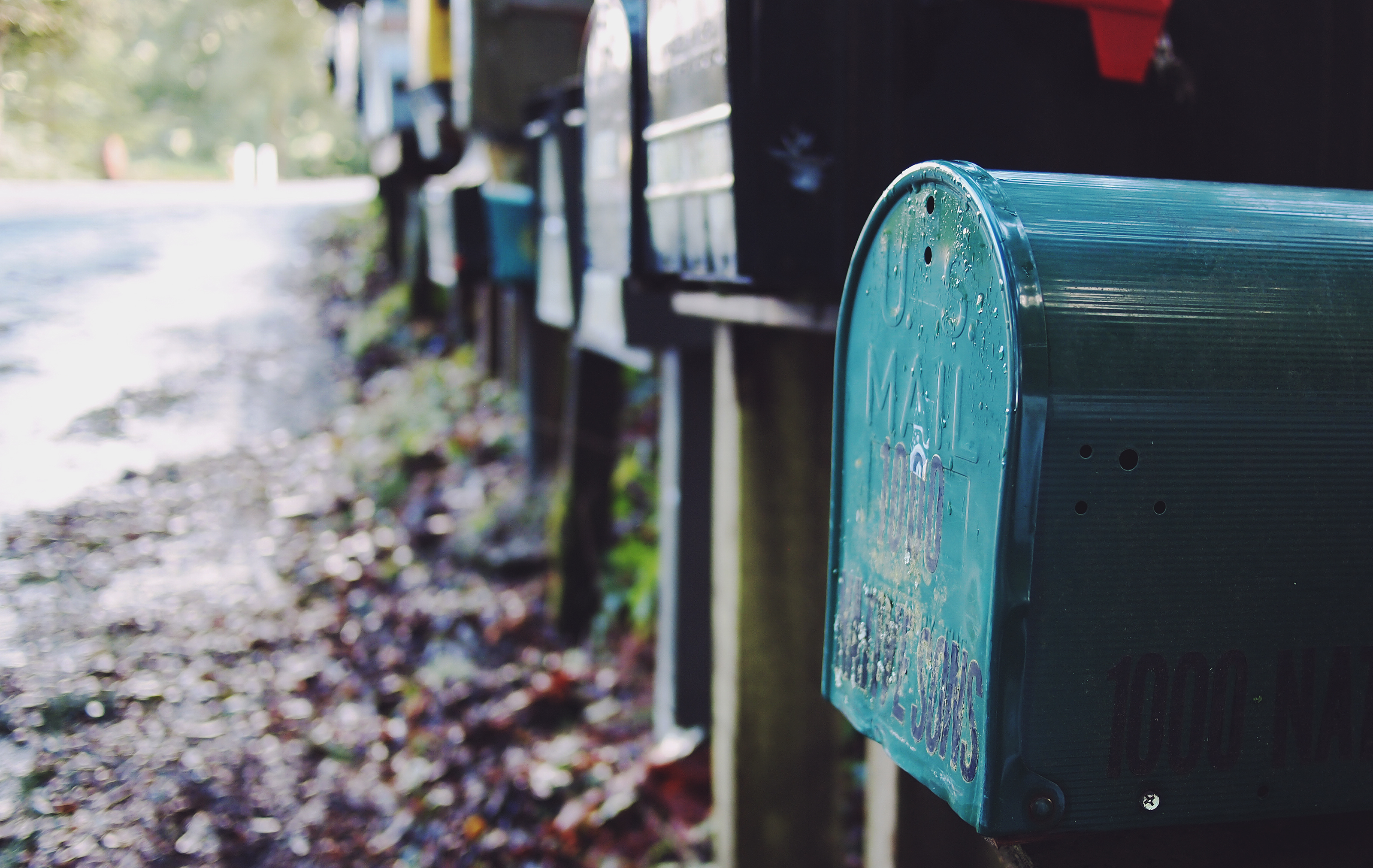 direct mail solicitation for nonprofit organizations